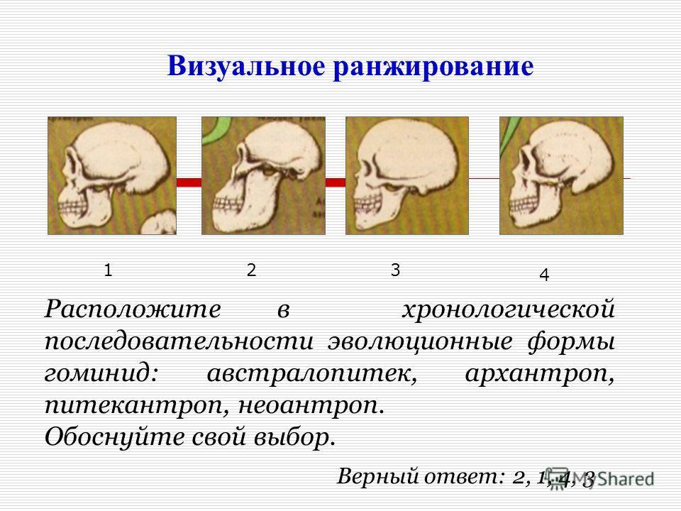 Визуальное ранжирование Расположите в хронологической последовательности эволюционные формы гоминид: австралопитек, архантроп, питекантроп, неоантроп. Обоснуйте свой выбор. 123 4 Верный ответ: 2, 1, 4, 3