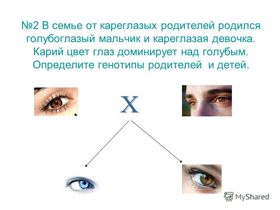 2 В семье от кареглазых родителей родился голубоглазый мальчик и кареглазая девочка. Карий цвет глаз доминирует над голубым. Определите генотипы родителей и детей.