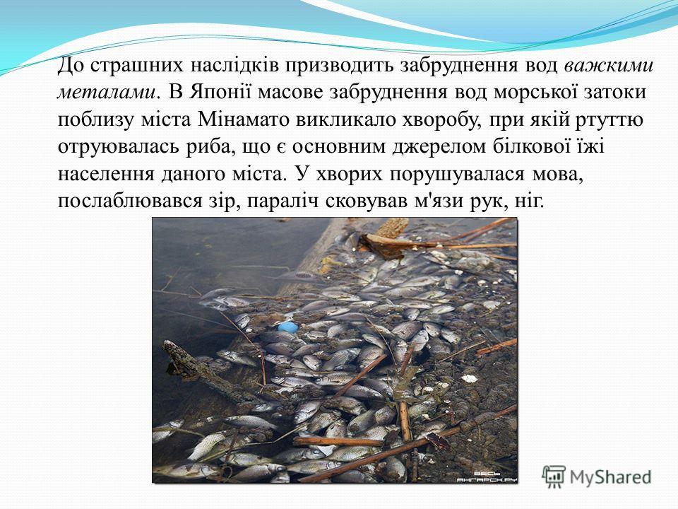 До страшных наслідків производить забруднення вод важкими металами. В Японії массовые забруднення вод морської затоки поблизу міста Мінамато викликало хворобу, при якій ртутью отруювалась рыба, що є основним джерелом білкової їжі населения данного мі