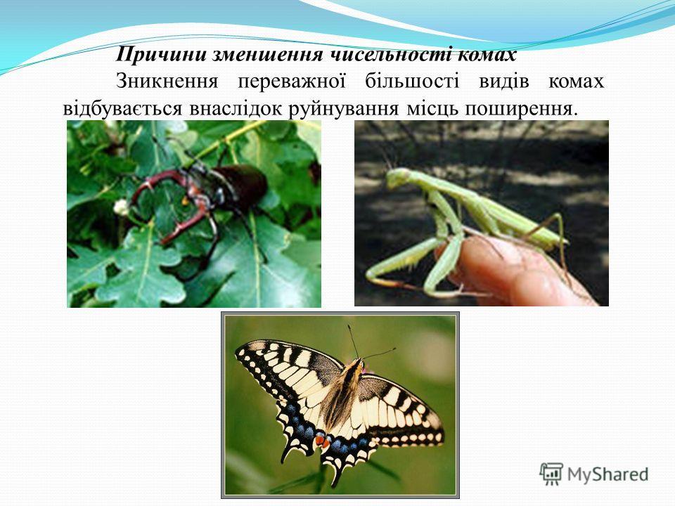 Причини зменшення чисельності комах Зникнення переважної більшості видів комах відбувається внаслідок руйнування місць поширення.