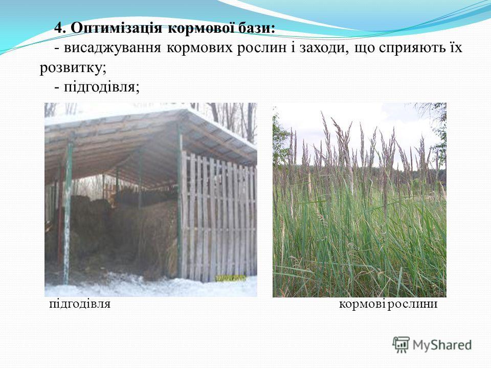 4. Оптимізація кормової бази: - висаджування кормових рослин і заходи, що сприяють їх розвитку; - підгодівля; підгодівлякормові рослини