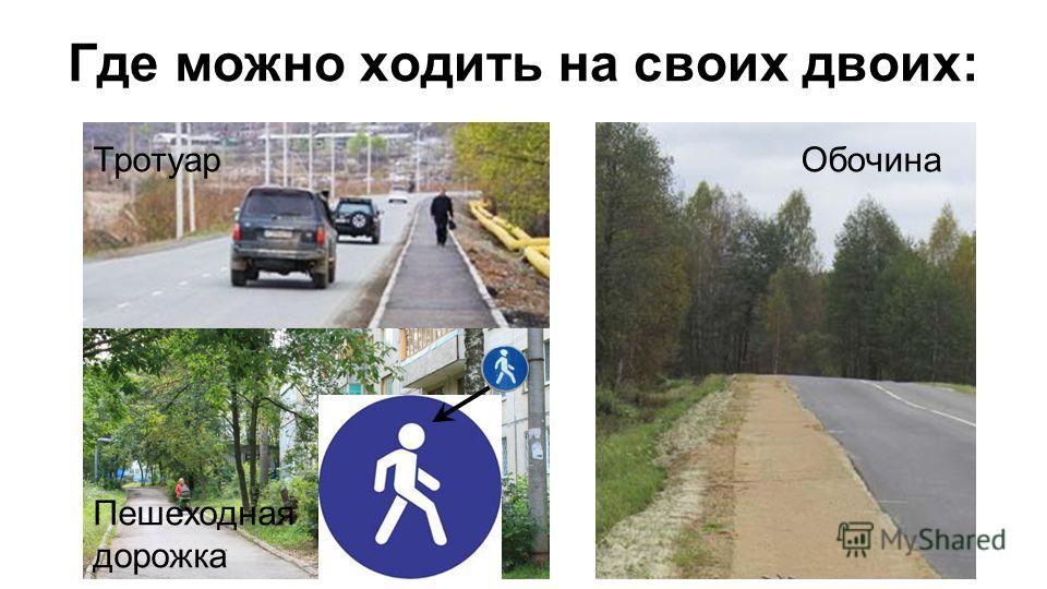 Где можно ходить на своих двоих: Тротуар Пешеходная дорожка Обочина