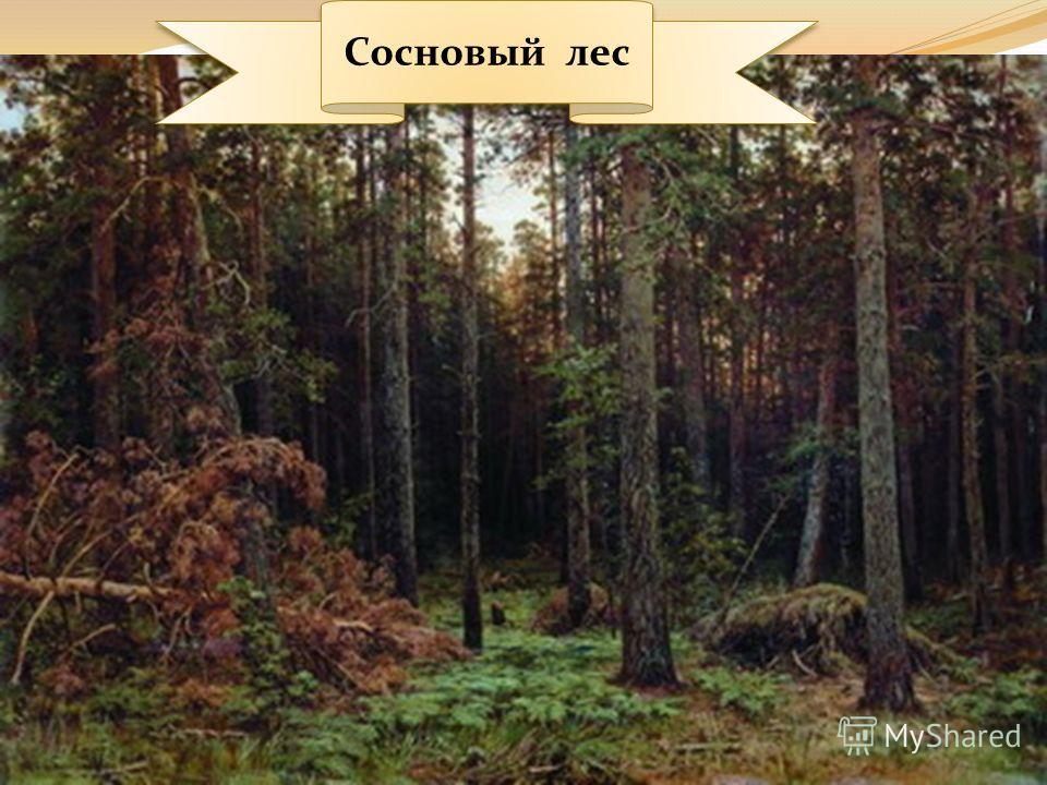 Рубка леса 1867.