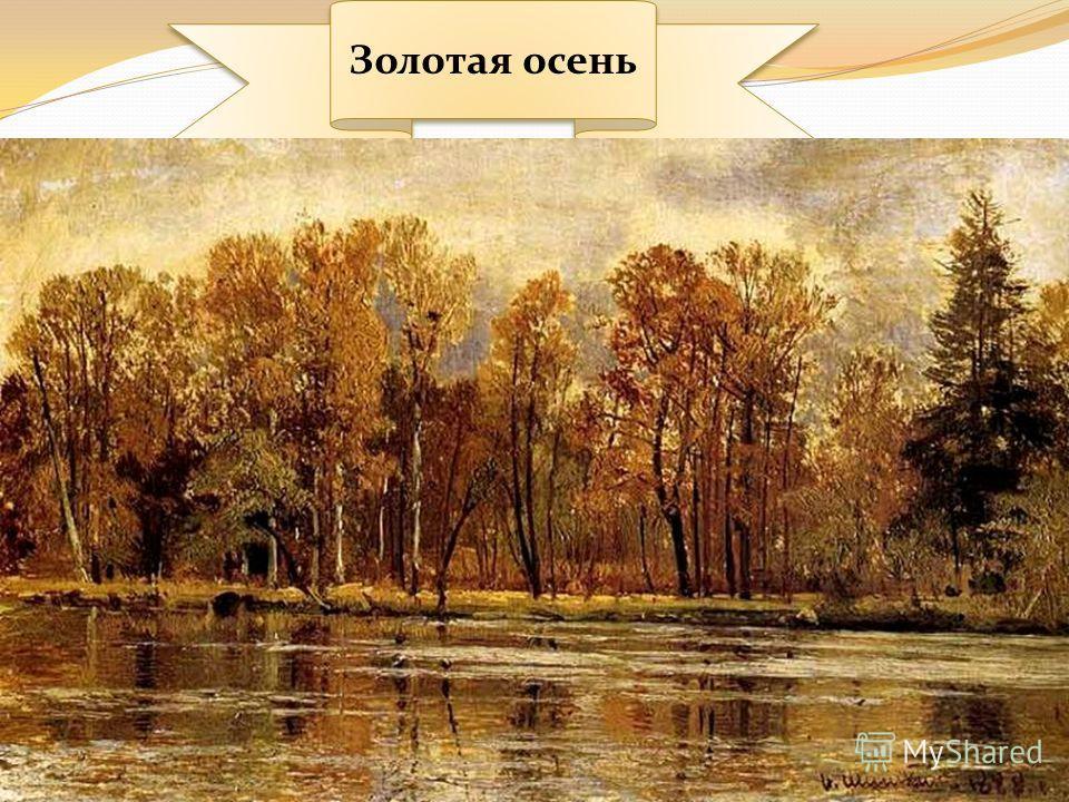 Ручей в лесу Лесная глушь