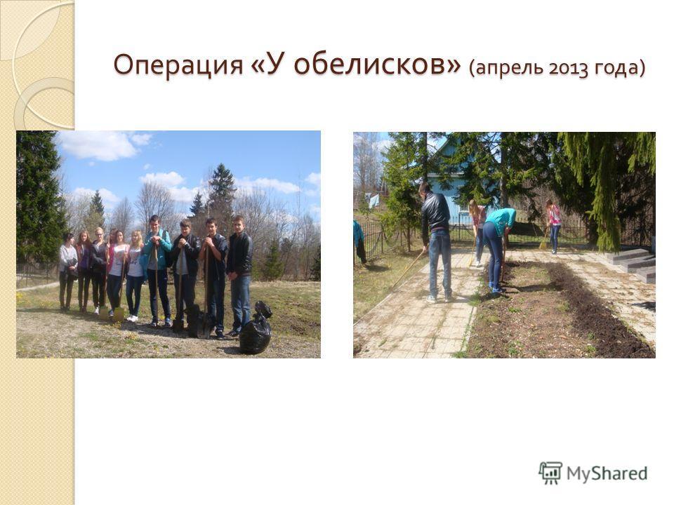 Операция « У обелисков » ( апрель 2013 года )