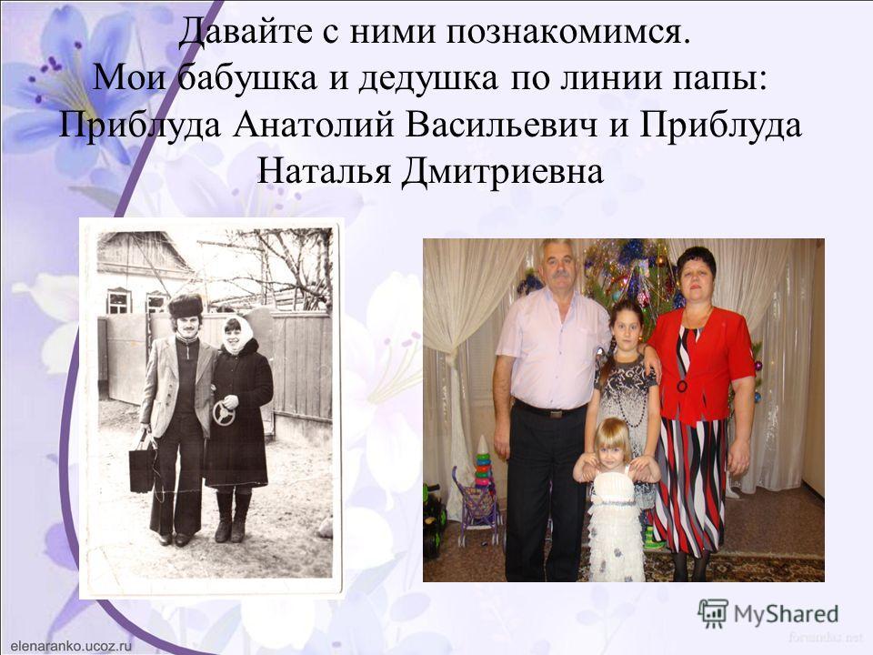 Давайте с ними познакомимся. Мои бабушка и дедушка по линии папы: Приблуда Анатолий Васильевич и Приблуда Наталья Дмитриевна