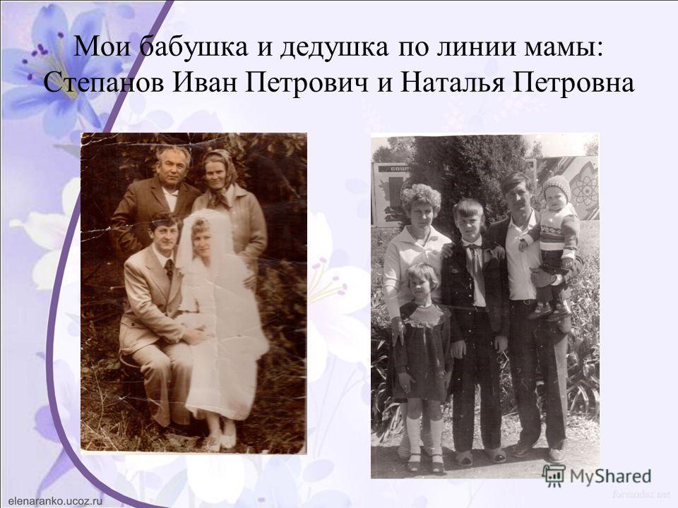 Мои бабушка и дедушка по линии мамы: Степанов Иван Петрович и Наталья Петровна