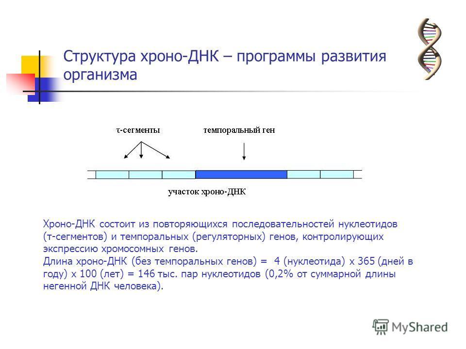 Структура хроно-ДНК – программы развития организма Хроно-ДНК состоит из повторяющихся последовательностей нуклеотидов (τ-сегментов) и темпоральных (регуляторных) генов, контролирующих экспрессию хромосомных генов. Длина хроно-ДНК (без темпоральных ге