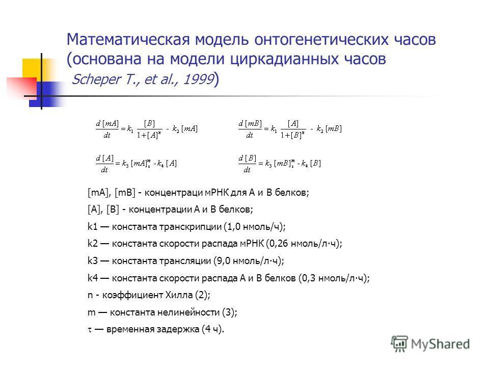 Математическая модель онтогенетических часов (основана на модели циркадианных часов Scheper T., et al., 1999 ) [mA], [mB] - концентраци мРНК для А и В белков; [A], [B] - концентрации А и В белков; k1 константа транскрипции (1,0 нмоль/ч); k2 константа