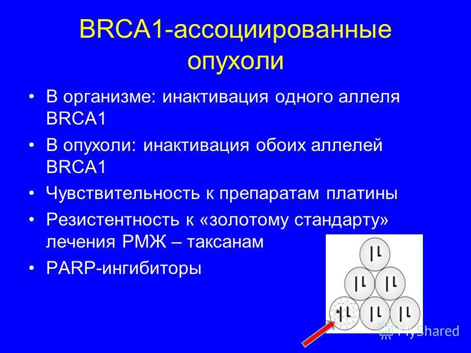 BRCA1-ассоциированные опухоли В организме: инактивация одного аллеля BRCA1 В опухоли: инактивация обоих аллелей BRCA1 Чувствительность к препаратам платины Резистентность к «золотому стандарту» лечения РМЖ – таксонам PARP-ингибиторы