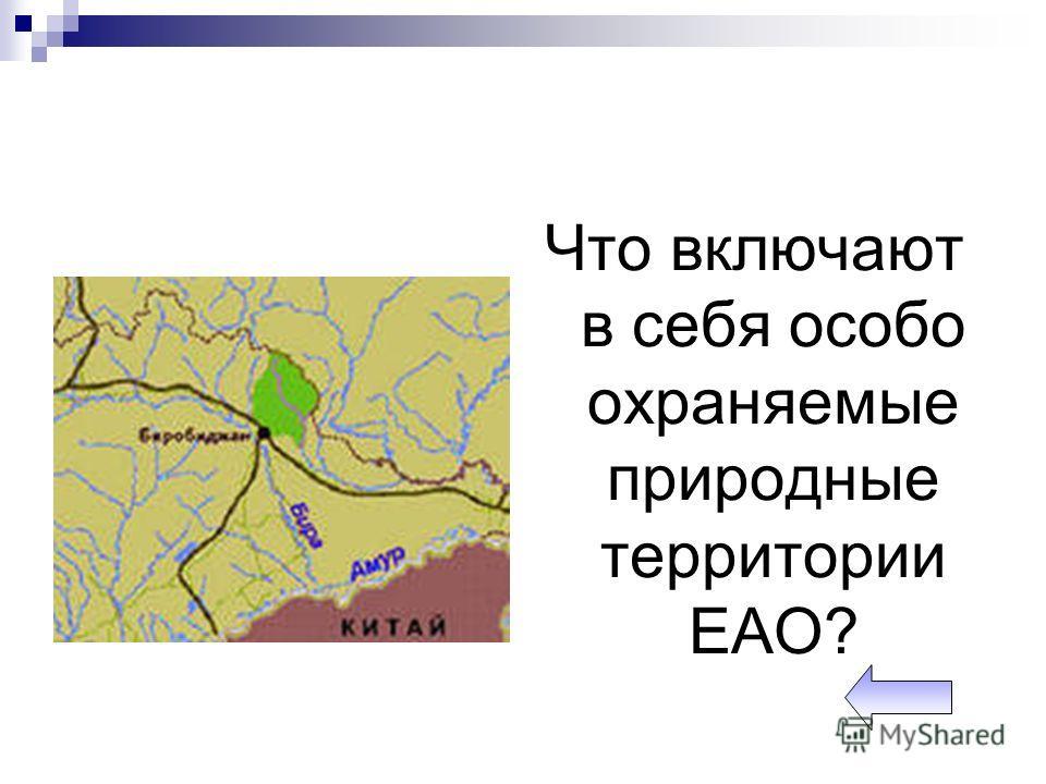 Что включают в себя особо охраняемые природные территории ЕАО?