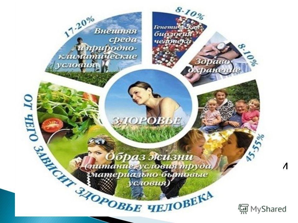 Здоровье человека и общества в целом зависит от множества социальных, природных и биологических факторов. Ученые утверждают, что здоровье народа определяется: 1) на 50 – 55% образом жизни (ОЖ), 2) на 20-25% – экологическими, 3) на 20% – наследственны