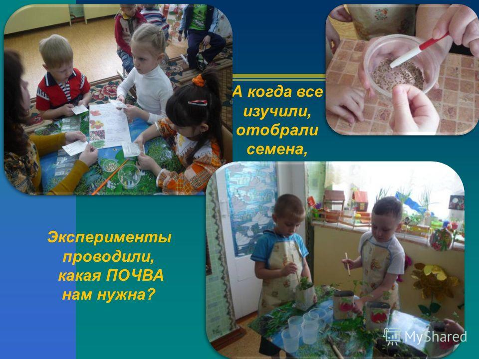 А когда все изучили, отобрали семена, Эксперименты проводили, какая ПОЧВА нам нужна?