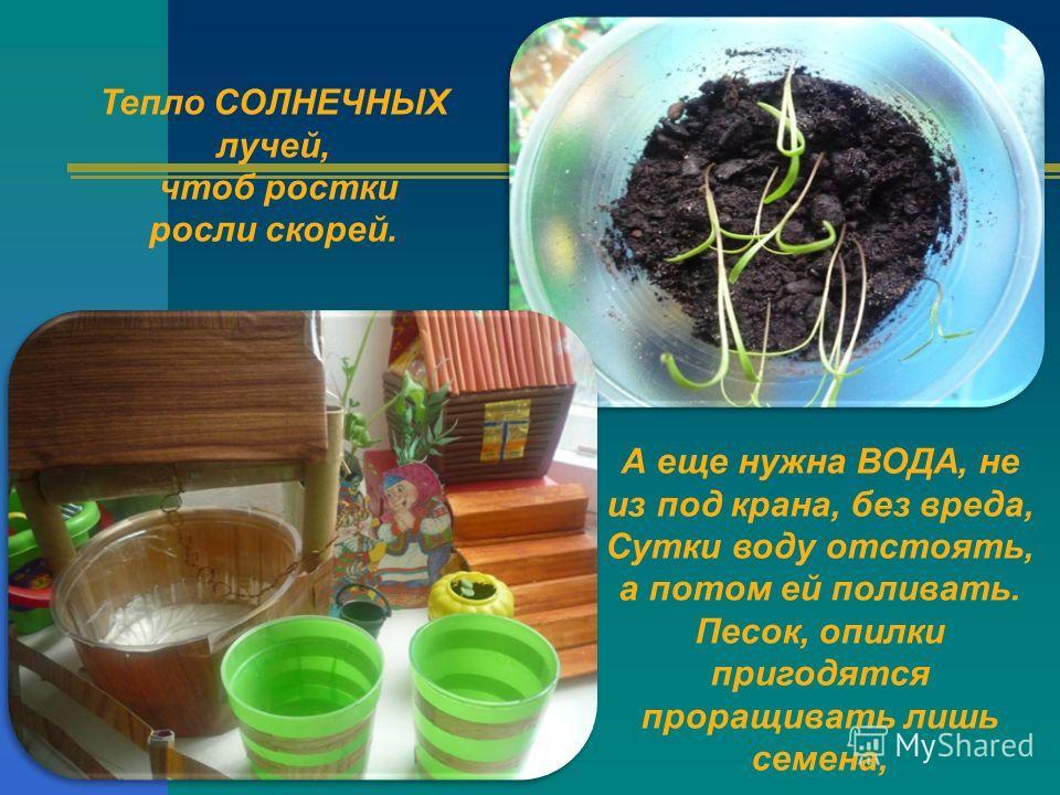 Тепло СОЛНЕЧНЫХ лучей, чтоб ростки росли скорей. А еще нужна ВОДА, не из под крана, без вреда, Сутки воду отстоять, а потом ей поливать. Песок, опилки пригодятся проращивать лишь семена,