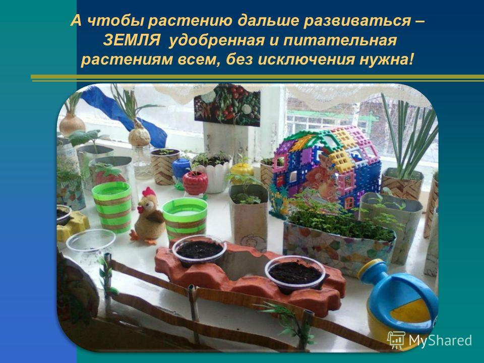 А чтобы растению дальше развиваться – ЗЕМЛЯ удобренная и питательная растениям всем, без исключения нужна!