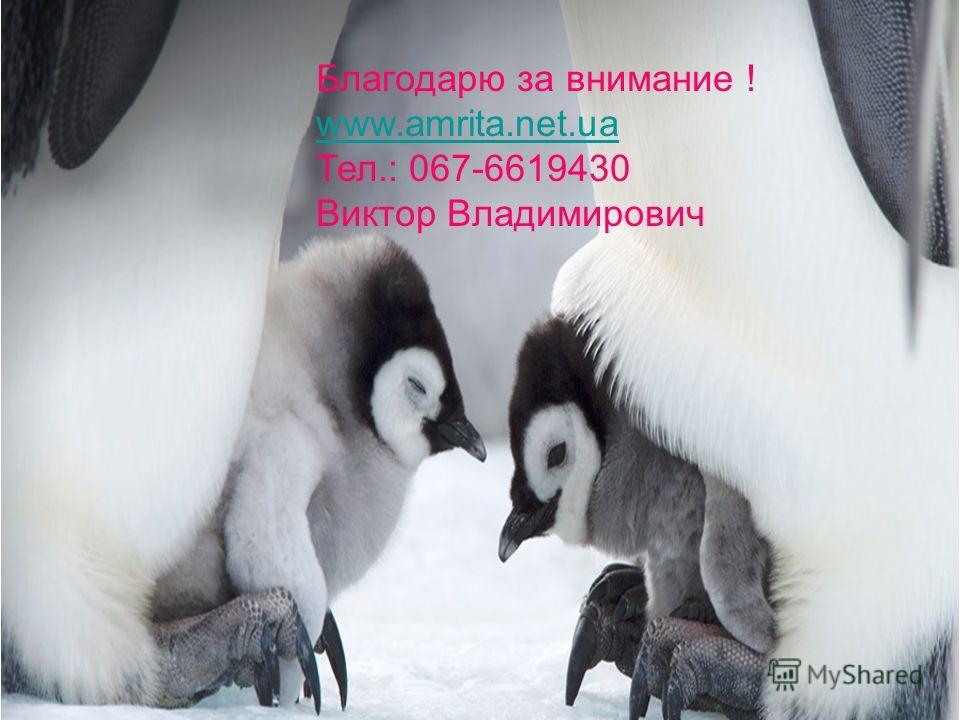 Благодарю за внимание! www.amrita.net.ua Тел.: 067-6619430 Виктор Владимирович