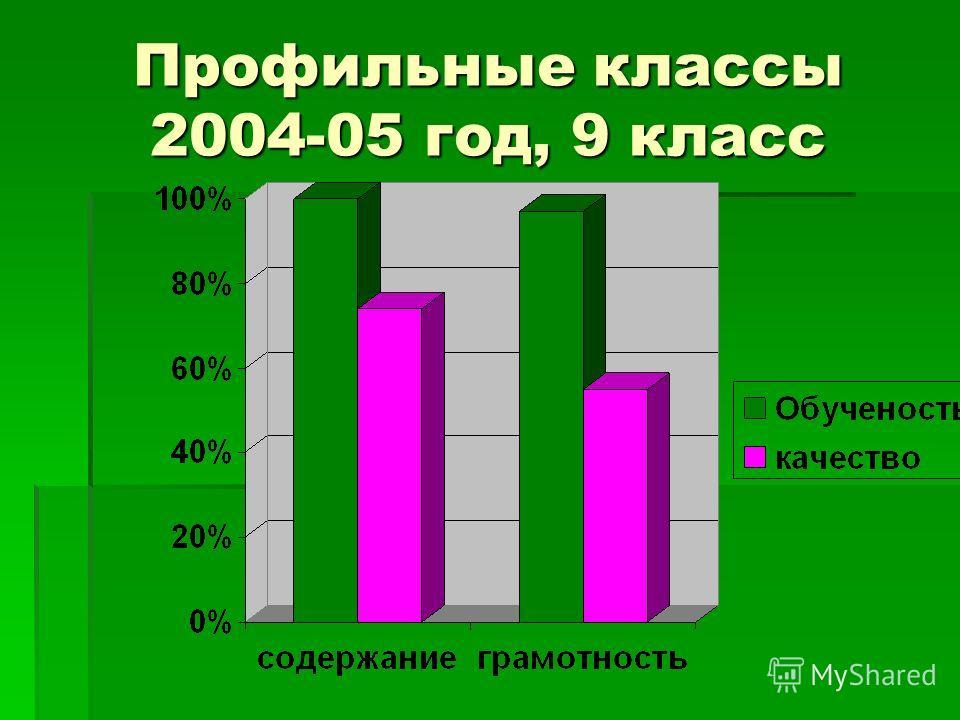 Профильные классы 2004-05 год, 9 класс