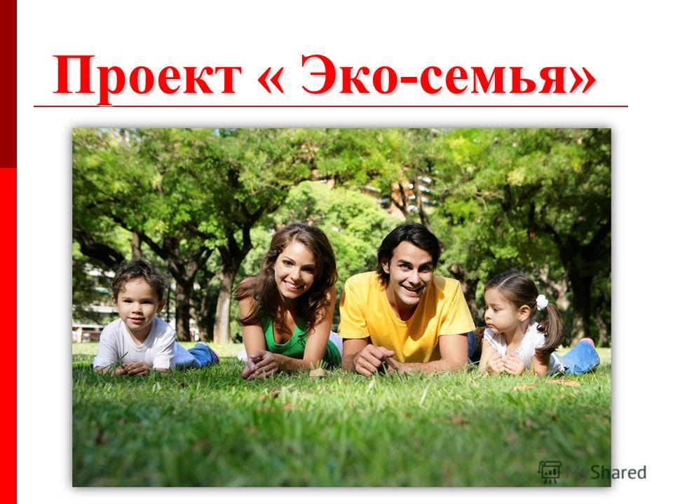 Проект « Эко-семья»