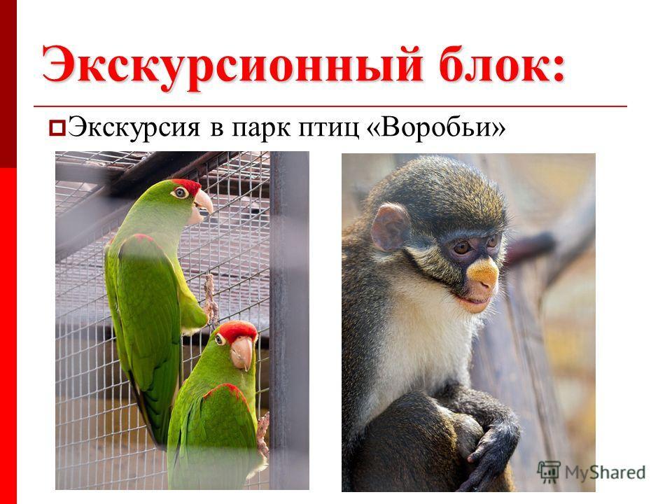 Экскурсионный блок: Экскурсия в парк птиц «Воробьи»