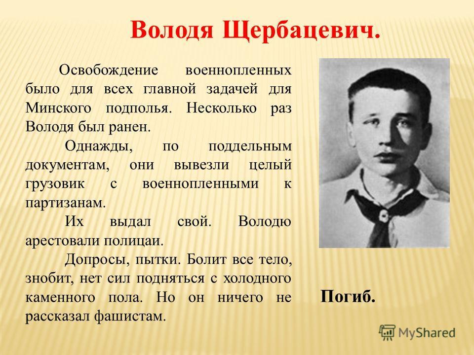 Володя Щербацевич. Освобождение военнопленных было для всех главной задачей для Минского подполья. Несколько раз Володя был ранен. Однажды, по поддельным документам, они вывезли целый грузовик с военнопленными к партизанам. Их выдал свой. Володю арес