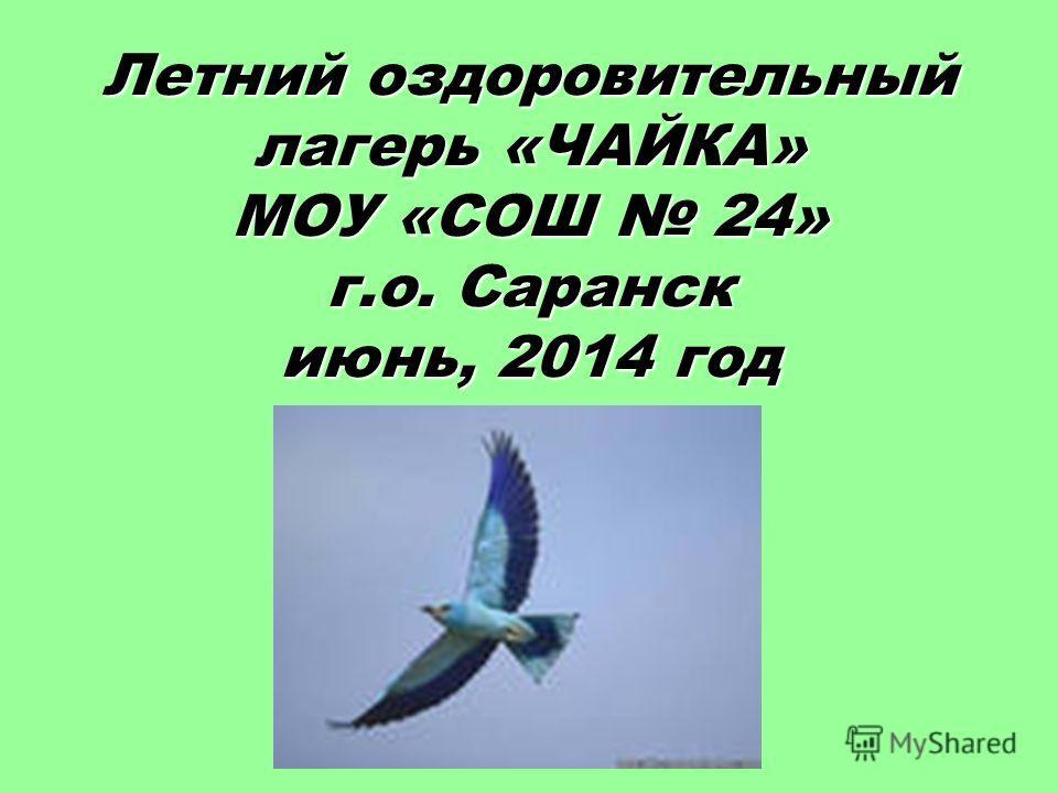 Летний оздоровительный лагерь «ЧАЙКА» МОУ «СОШ 24» г.о. Саранск июнь, 2014 год