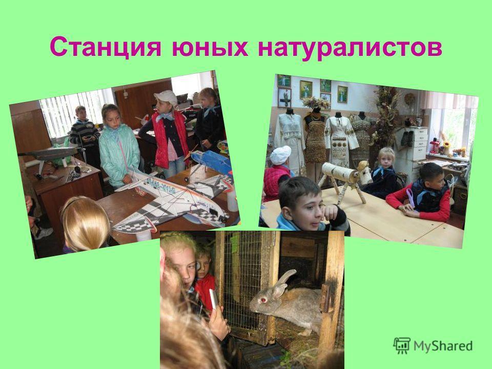 Станция юных натуралистов