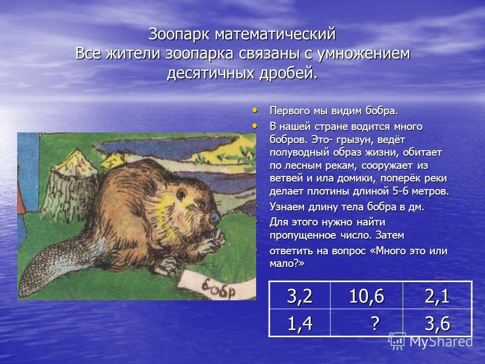 Зоопарк математический Все жители зоопарка связаны с умножением десятичных дробей. Первого мы видим бобра. Первого мы видим бобра. В нашей стране водится много бобров. Это- грызун, ведёт полуводный образ жизни, обитает по лесным рекам, сооружает из в