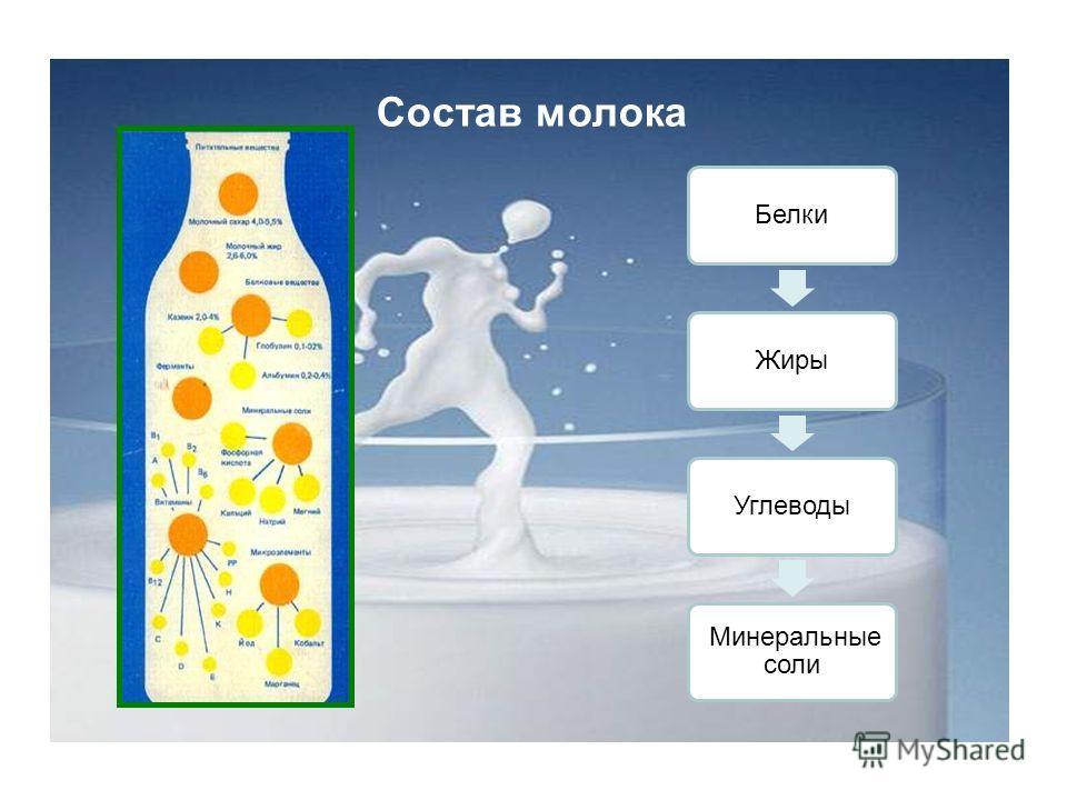 Белки ЖирыУглеводы Минеральные соли Состав молока