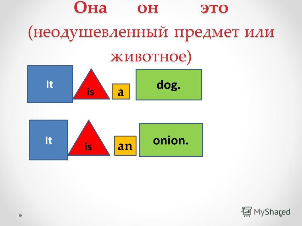 Она он это (неодушевленный предмет или животное) It is dog. onion. a an