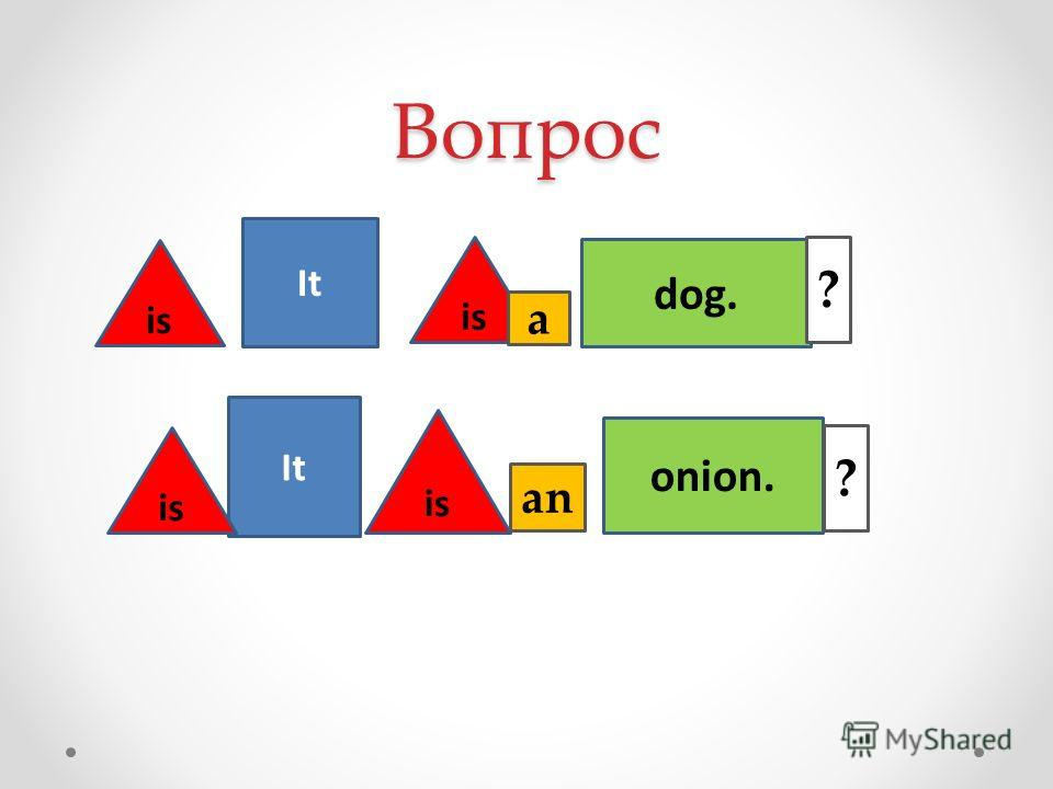 Вопрос It is dog. onion. is ? ? a an