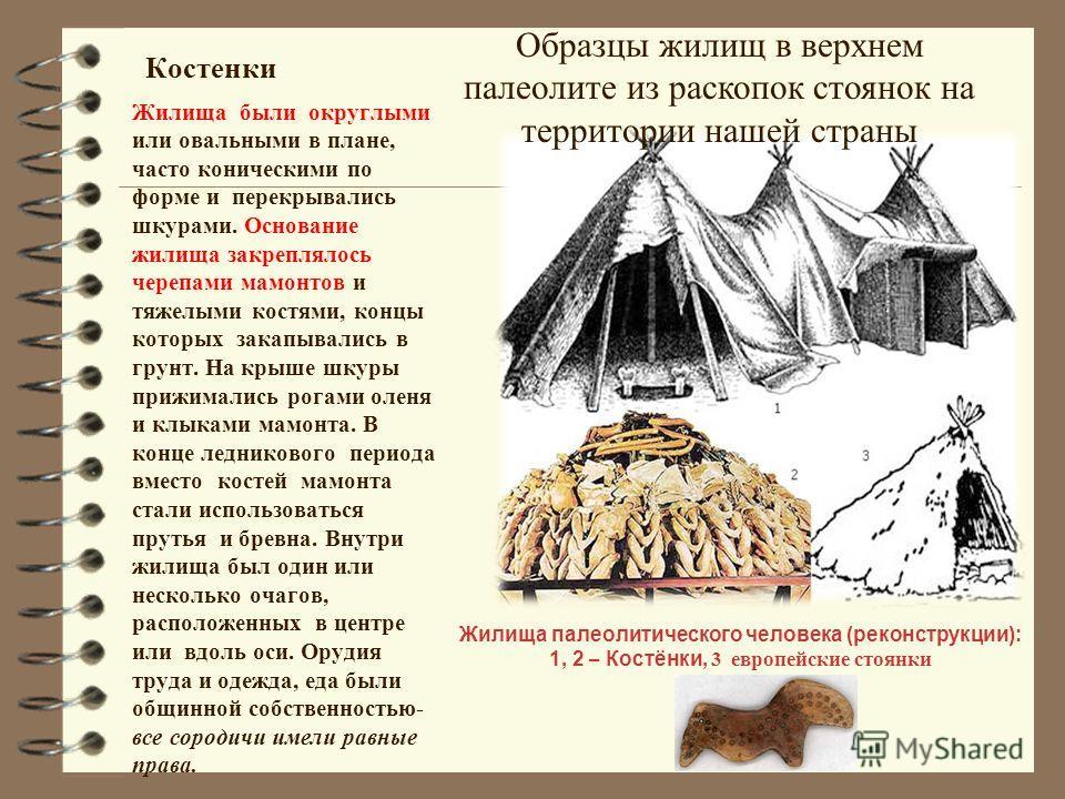 Костенки Жилища были округлыми или овальными в плане, часто коническими по форме и перекрывались шкурами. Основание жилища закреплялось черепами мамонтов и тяжелыми костями, концы которых закапывались в грунт. На крыше шкуры прижимались рогами оленя