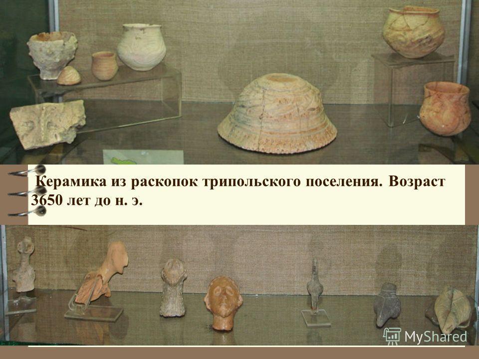 Керамика из раскопок трипольского поселения. Возраст 3650 лет до н. э.