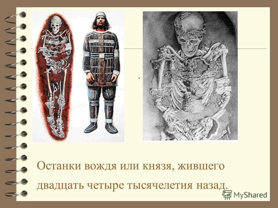. Останки вождя или князя, жившего двадцать четыре тысячелетия назад.