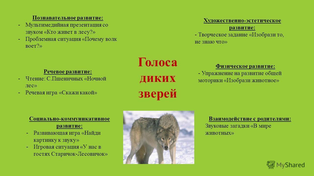 Познавательное развитие: -Мультимедийная презентация со звуком «Кто живет в лесу?» -Проблемная ситуация «Почему волк воет?» Речевое развитие: -Чтение: С.Пшеничных «Ночной лес» -Речевая игра «Скажи какой» Социально-коммуникативное развитие: -Развивающ