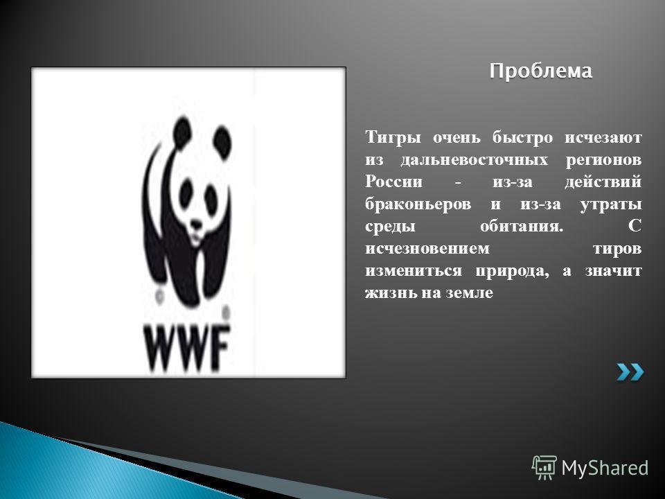 Тигры очень быстро исчезают из дальневосточных регионов России - из-за действий браконьеров и из-за утраты среды обитания. C исчезновением тиров измениться природа, а значит жизнь на земле Проблема
