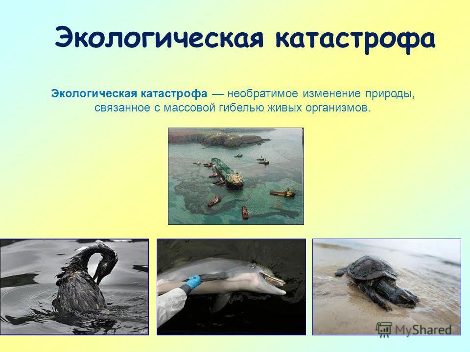 Экологическая катастрофа Экологическая катастрофа необратимое изменение природы, связанное с массовой гибелью живых организмов.