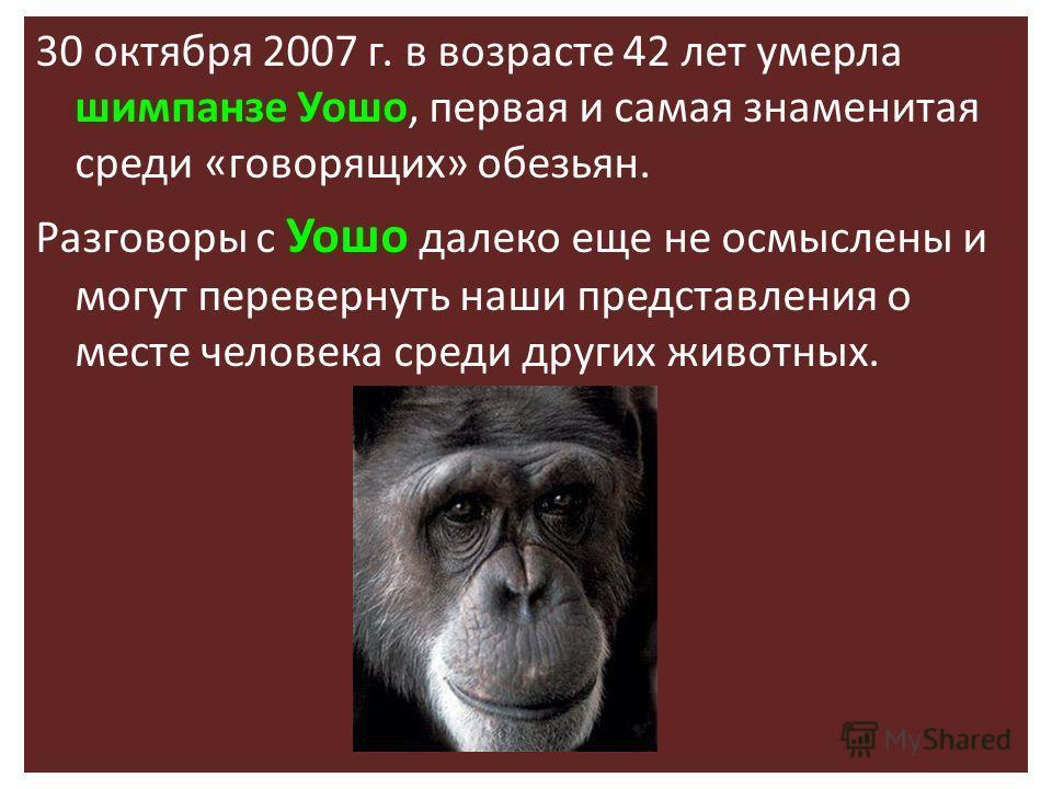 30 октября 2007 г. в возрасте 42 лет умерла шимпанзе Уошо, первая и самая знаменитая среди «говорящих» обезьян. Разговоры с Уошо далеко еще не осмыслены и могут перевернуть наши представления о месте человека среди других животных.