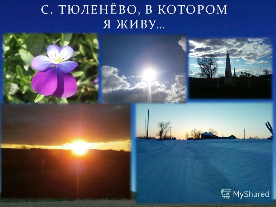 С. ТЮЛЕНЁВО, В КОТОРОМ Я ЖИВУ …