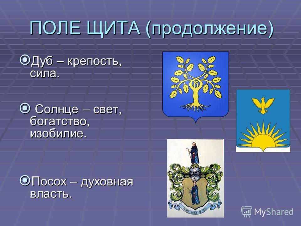 ПОЛЕ ЩИТА (продолжение) Дуб – крепость, сила. Дуб – крепость, сила. Солнце – свет, богатство, изобилие. Солнце – свет, богатство, изобилие. Посох – духовная власть. Посох – духовная власть.