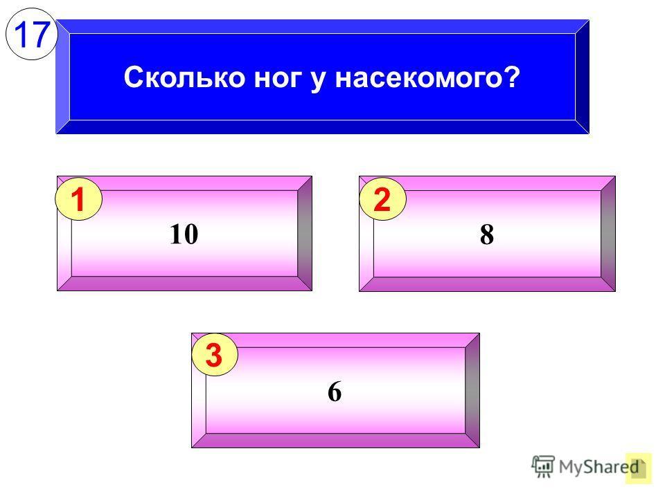 Сколько ног у насекомого? 10 1 8 2 6 3 17