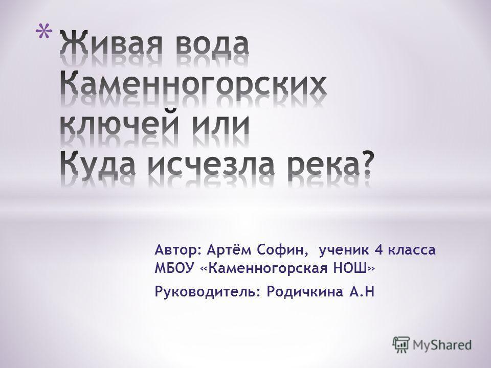 Автор: Артём Софин, ученик 4 класса МБОУ «Каменногорская НОШ» Руководитель: Родичкина А.Н