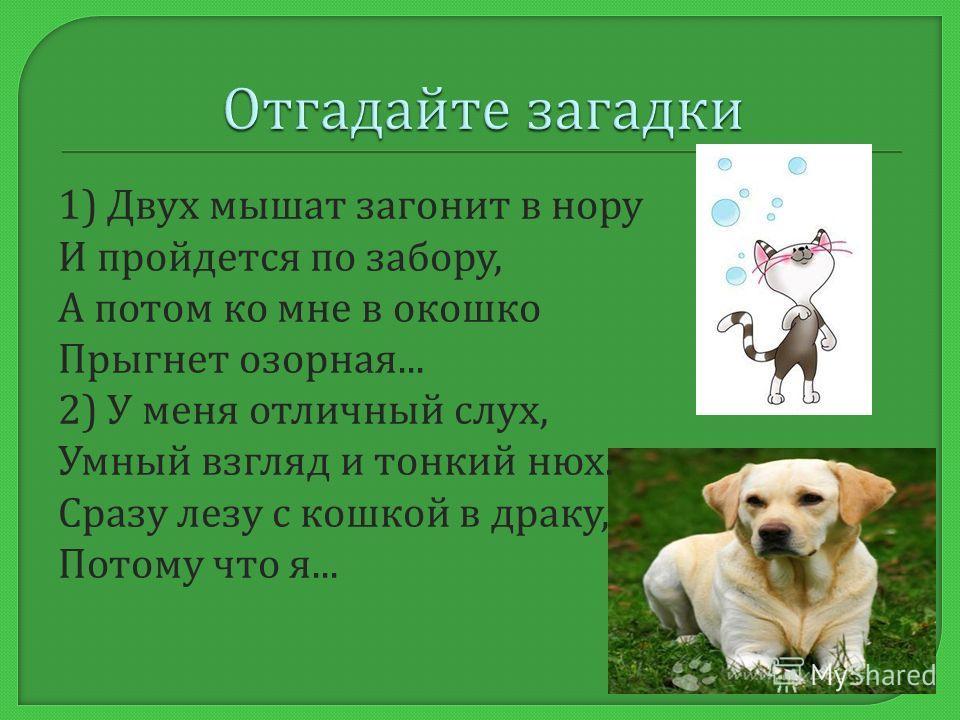 Дети, какие животные живут рядом с человеком ? Собака, кошка, лошадь, корова, свинья, коза и т. д А как они называются ? Домашние животные.