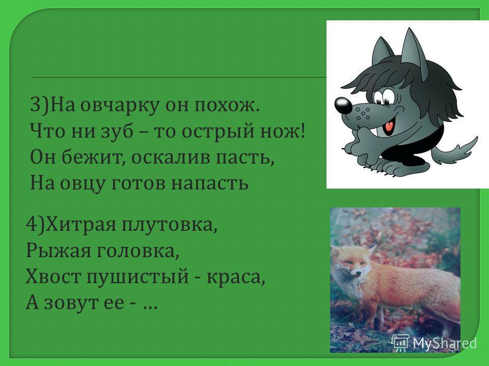 1) Отойди - ка от берлоги. Уноси скорее ноги, А не то начну реветь. Я не ежик, а … 2) Лесом катится клубок, У него колючий бок. Он охотится ночами За жуками, за мышами