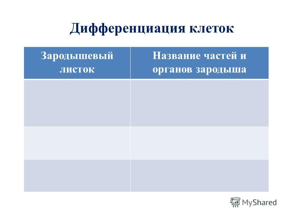 Дифференциация клеток Зародышевый листок Название частей и органов зародыша
