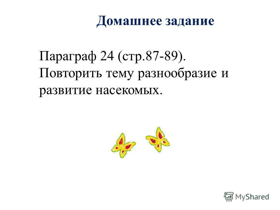 Домашнее задание Параграф 24 (стр.87-89). Повторить тему разнообразие и развитие насекомых.