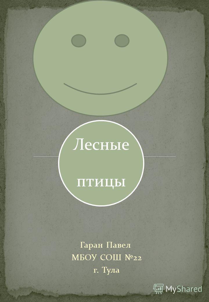 Лесные птицы Гаран Павел МБОУ СОШ 22 г. Тула