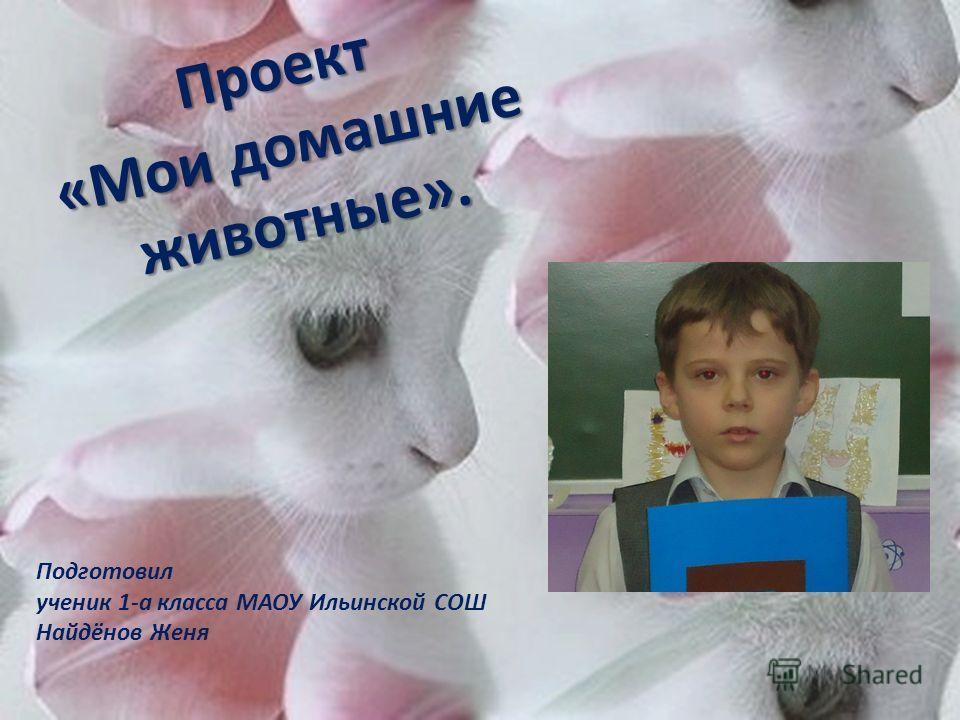 Подготовил ученик 1-а класса МАОУ Ильинской СОШ Найдёнов Женя Проект «Мои домашние животные».