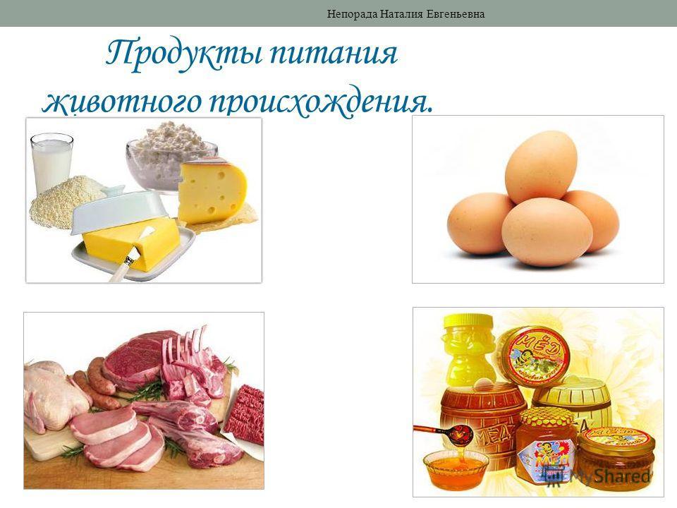 Продукты питания животного происхождения. Непорада Наталия Евгеньевна