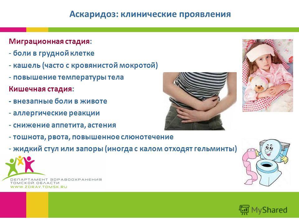 Аскаридоз: клинические проявления Миграционная стадия: - боли в грудной клетке - кашель (часто с кровянистой мокротой) - повышение температуры тела Кишечная стадия: - внезапные боли в животе - аллергические реакции - снижение аппетита, астения - тошн
