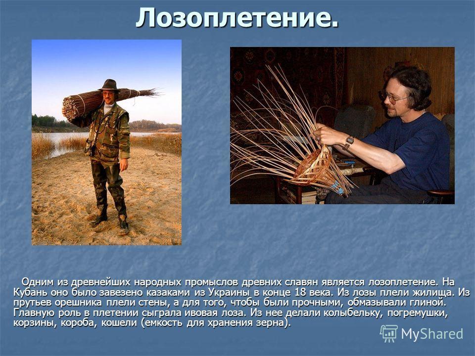 Лозоплетение. Одним из древнейших народных промыслов древних славян является лозоплетение. На Кубань оно было завезено казаками из Украины в конце 18 века. Из лозы плели жилища. Из прутьев орешника плели стены, а для того, чтобы были прочными, обмазы